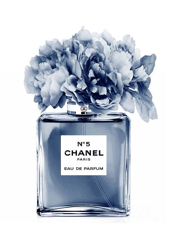 Chanel Perfume N.5 indigo Poster by Green Palace