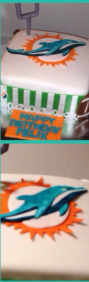 Miami Dolphin Cake