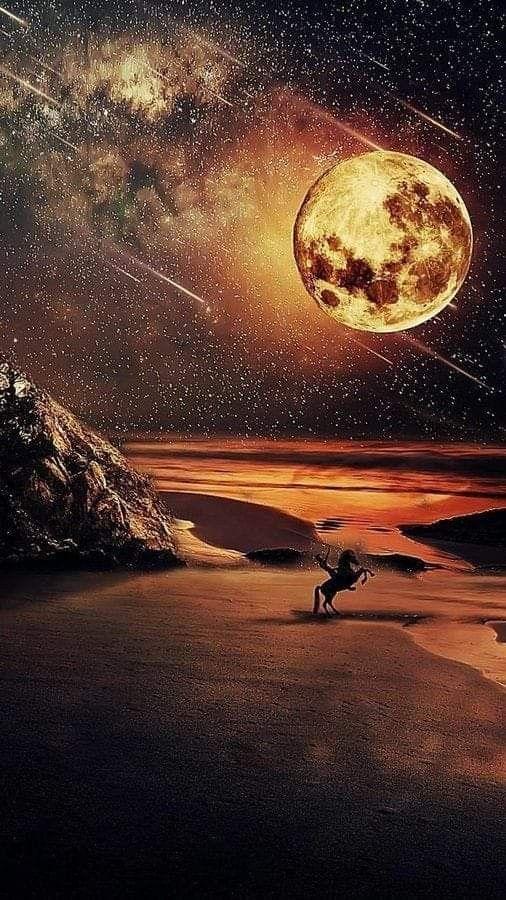 من النادر أن تجد رجلا يوصف بالحكمة وسعة العقل إلا وله تاريخ في المحن والمصائب لأنها مصنع الرجال ولايظهر بري Beautiful Moon Moon Photography Nature Photography