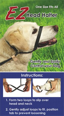 Ez One Piece Halter Leash Psychiatric Service Dog Guide Dog Dogs