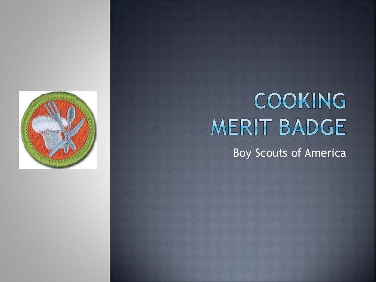 Boy Scouts of America   BSA   Boy scouts merit badges, Merit