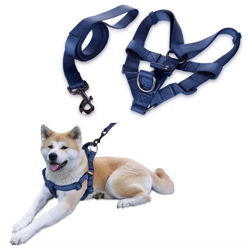 Petacc Adjustable Dog Harness Leash Set With Chest Strap Multi