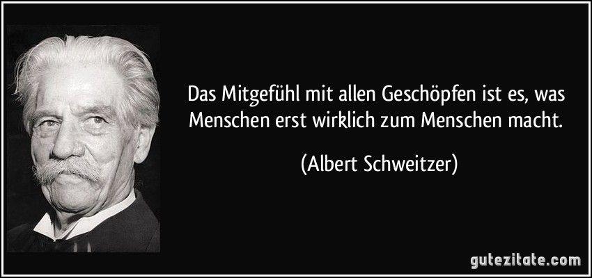 Das Mitgefuhl Mit Allen Geschopfen Ist Es Was Menschen Erst Wirklich Zum Menschen Macht Albert Sch Weisheiten Zitate Albert Schweitzer Zitate Spruche Zitate