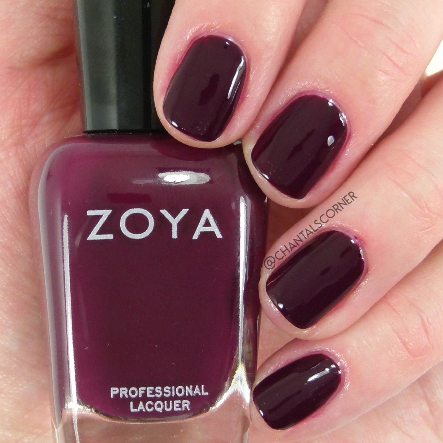 Zoya Nail Polish In Rachael Swatches And Review Zoya Nail