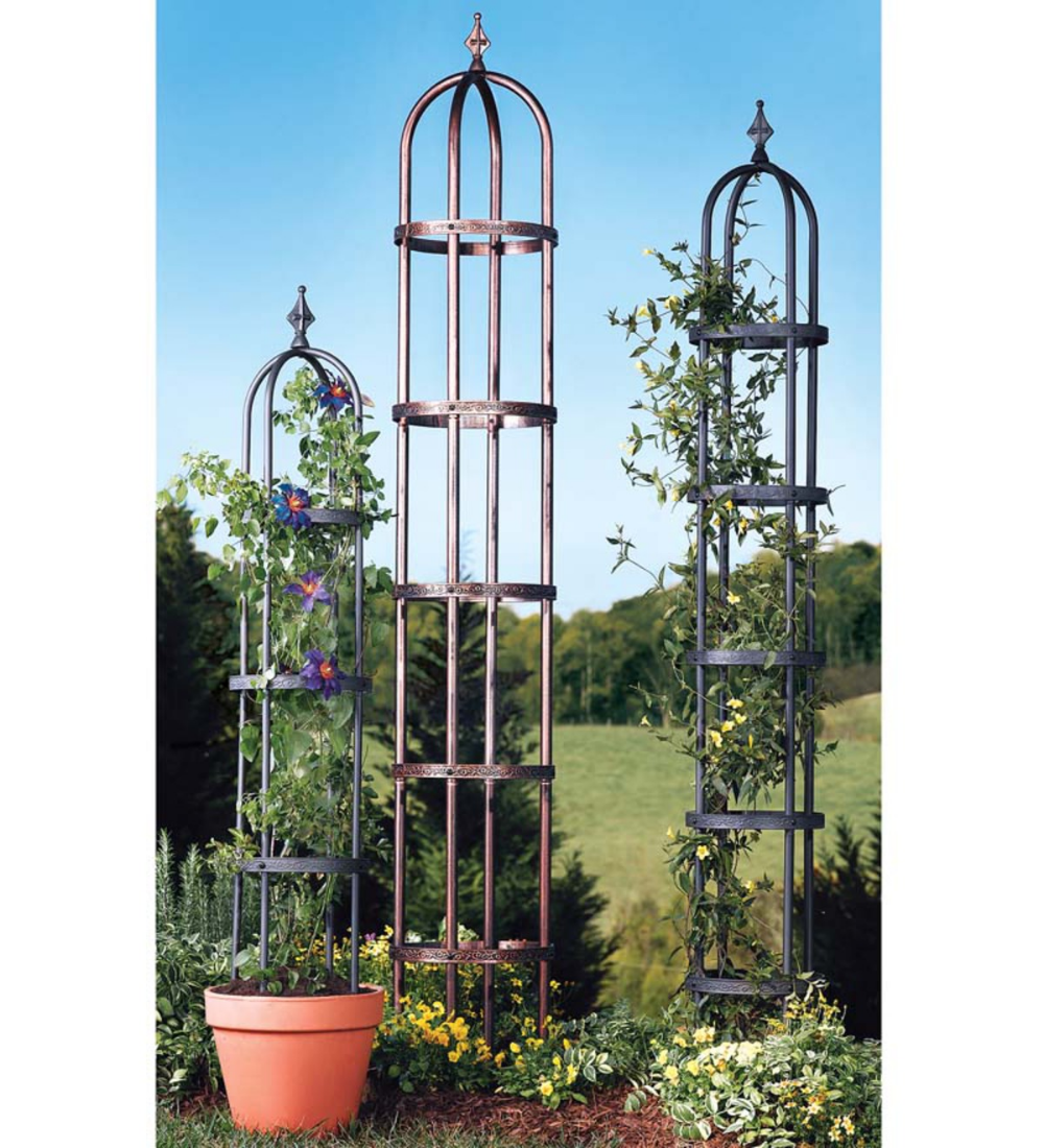 Climbing And Vine Plants Love To Creep Up The Sturdy Frames Of Our Steel Garden Obelisks These Unique Structure In 2020 Garden Obelisk Planter Gift Diy Garden Trellis