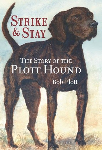 #plotthound