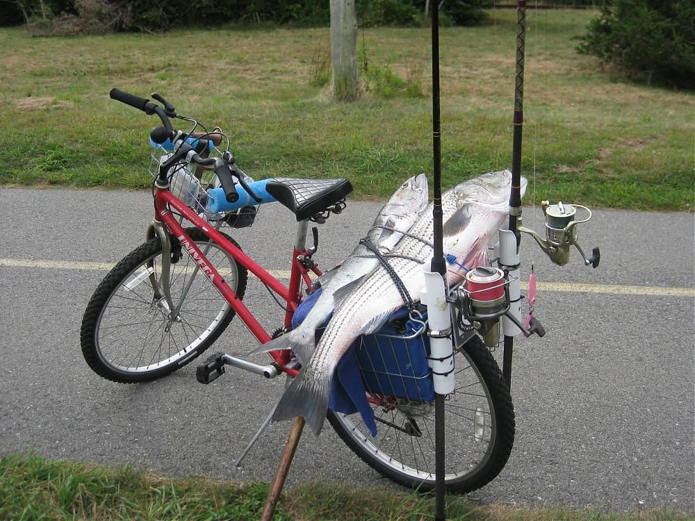Or You Could Spend Mega Bucks On A Big Boat Bicycle Fishing