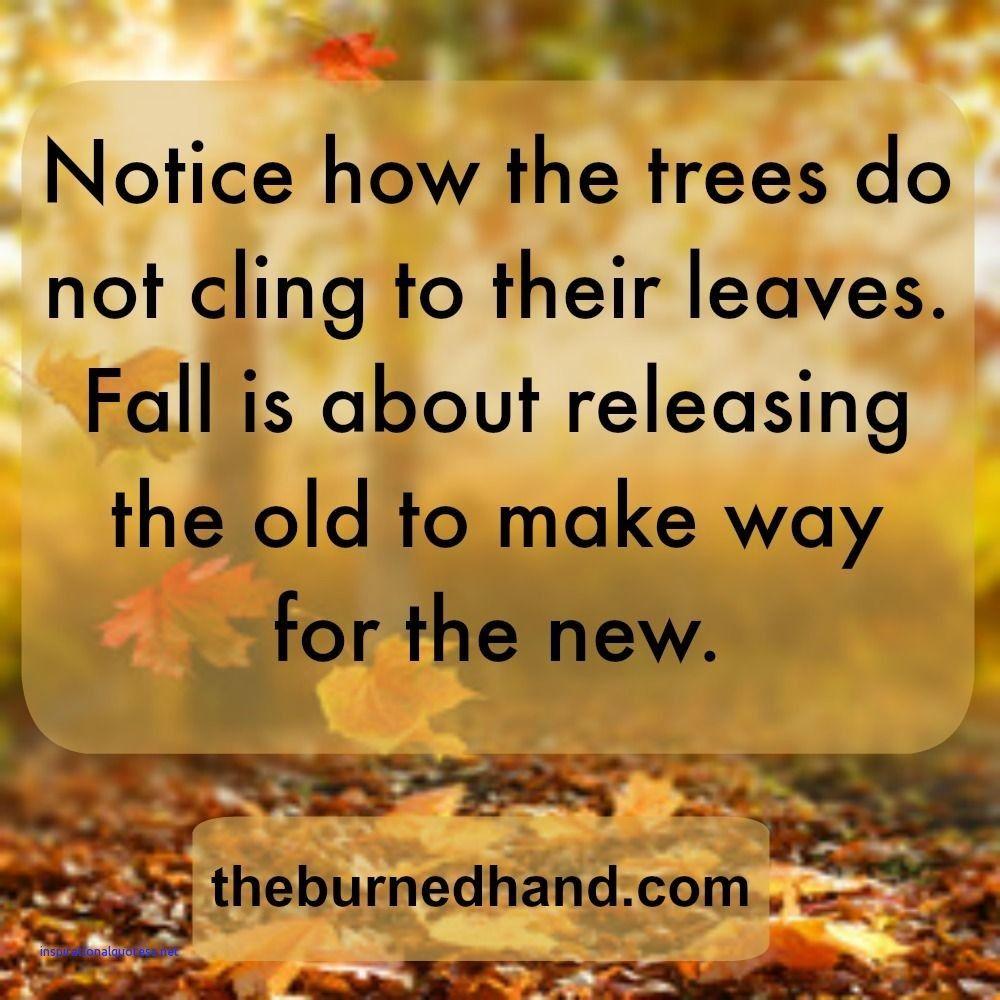 Inspirational Autumn Quotes