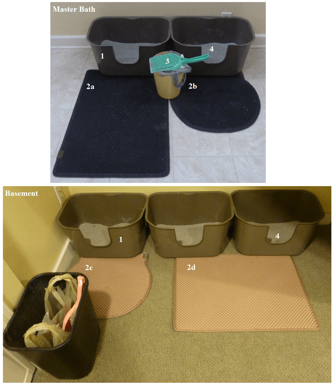 Managing Litter Boxes Litter Box Setup For Multiple Cats
