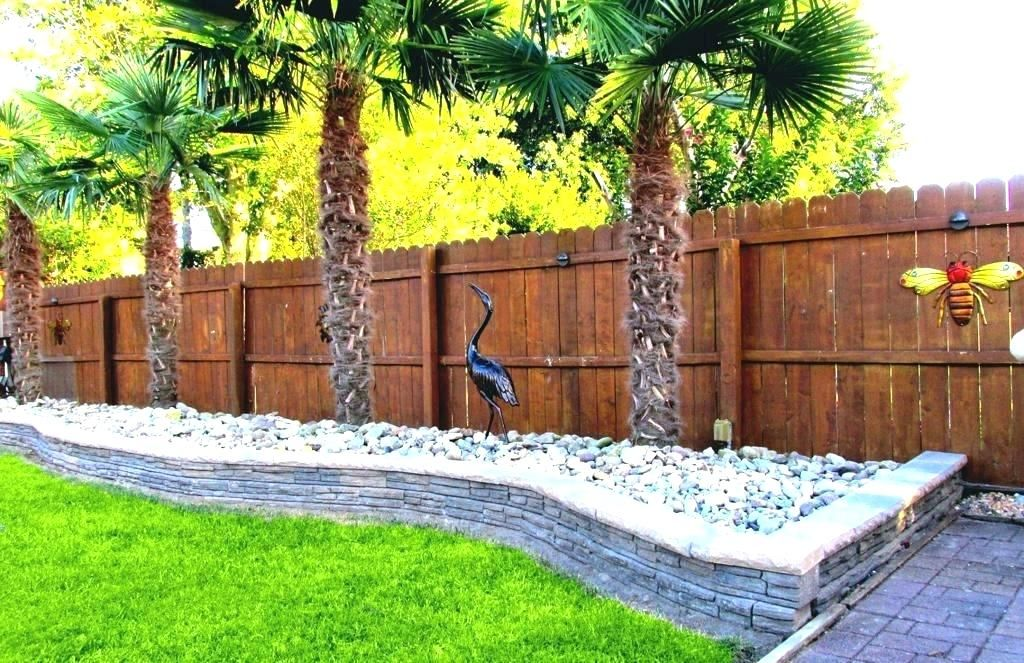 42 Palm Trees In The Front Yard Interior Design Ideas Home Decorating Inspiration Moercar Backyard Landscaping Front Yard Landscaping Palm Trees Landscaping