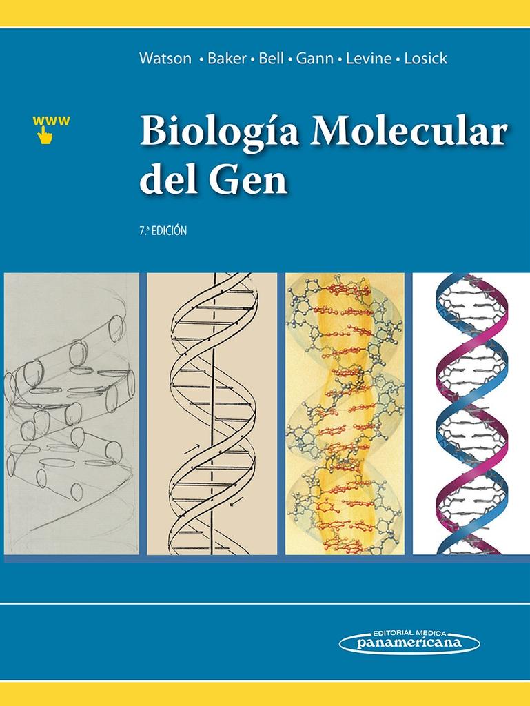Biología Molecular del Gen #Genetica #BiologiaCelular ...