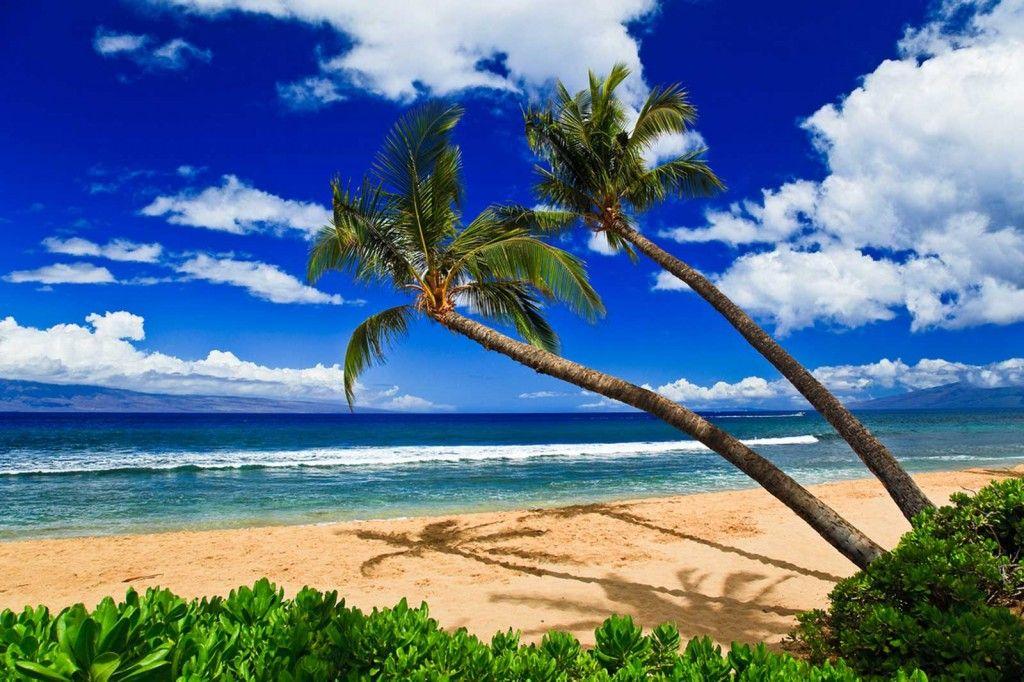 Ka Anapali Beach Scene If Ever There Was A Hawaii Calendar