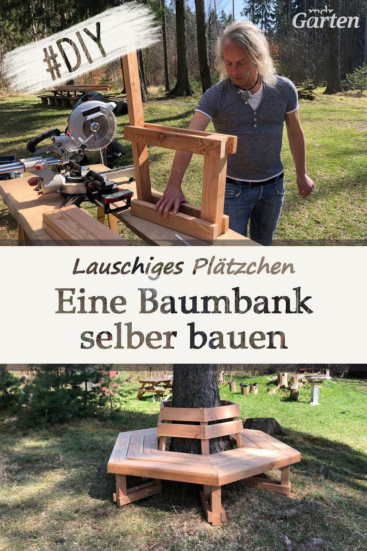 Eine Baumbank Bauen Holzideen Garten Mdr Garten Baumbank