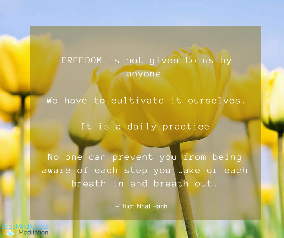 """""""Freedom is not given to us by anyone. We have to cultivate it to ourselves. It is a daily practice. No one can prevent you from being aware of each step you take or each breath in and breath out.""""  ~Thich Nhat Hanh"""