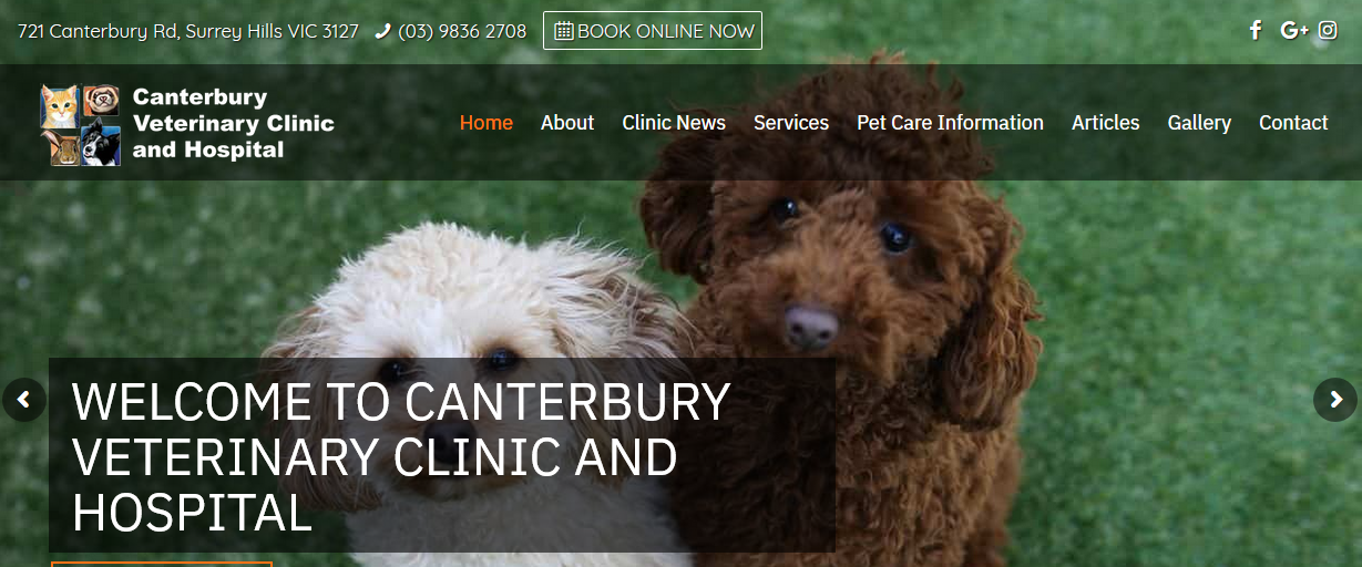 Canterbury Veterinary Hospital.Best Veterinary animal care