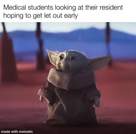 Med School Tutors Yoda Meme Yoda Funny Star Wars Memes