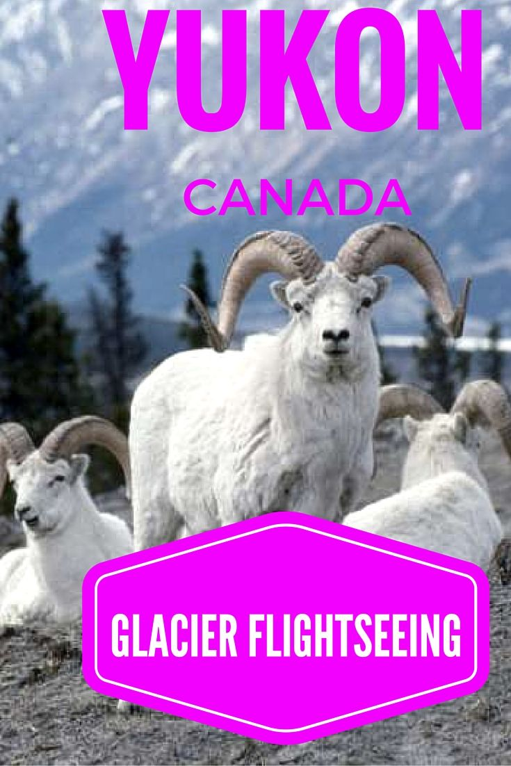 The Yukon's location in the Arctic Circle bestows spectacular scenery witnessed in only a few places.
