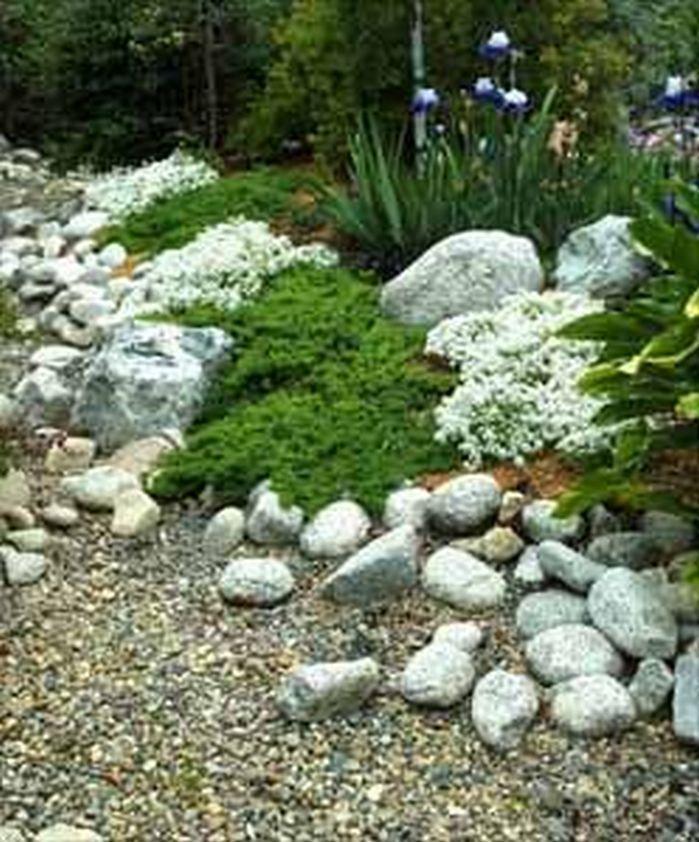 Rain Garden Design Landscaping Front Yards_42 #landscapingfrontyard