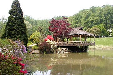 Genial Teahouse At Brookside Gardens In Maryland