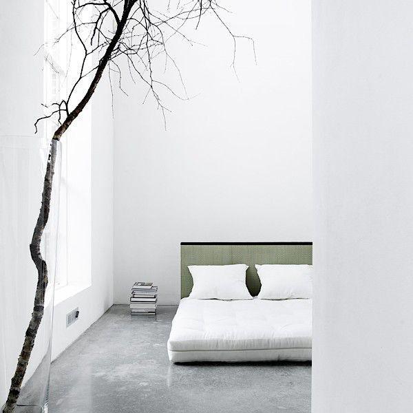 Tatami Sofa Bed Futon 2 Back Cushions Tatami Really A Good Deal