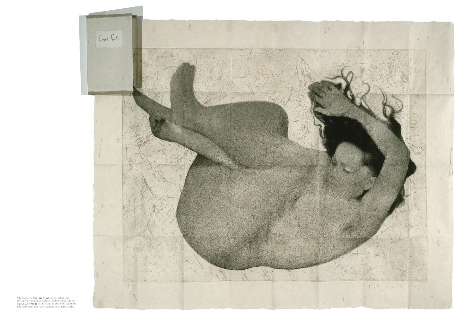 free fall kiki smith