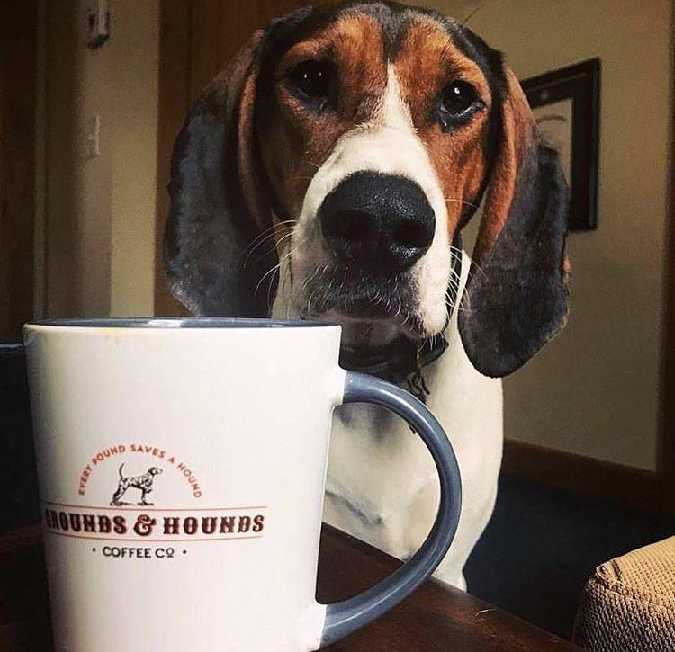 """""""My"""" Mug Mugs, Coffee hound, Coffee cups"""
