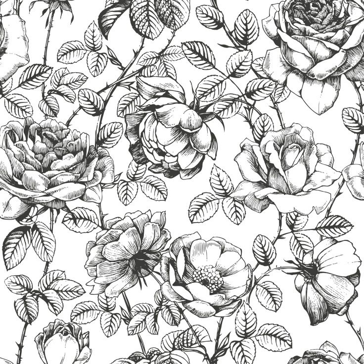 Black and white floral wallpaper anewall com