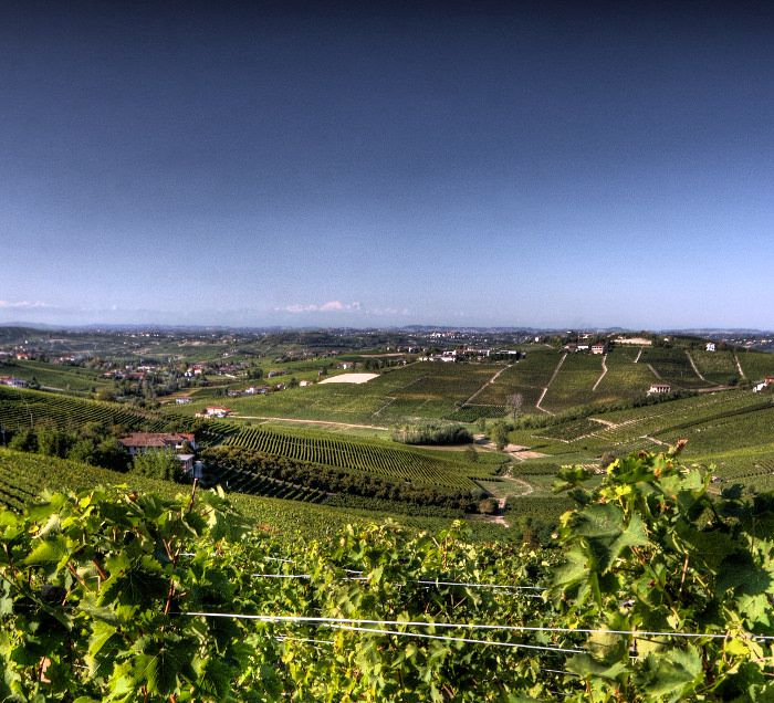 Sentieri del Gusto. Bike experiences in Langa | Outdoor Live Cycling and Hiking in Langhe e Monferrato