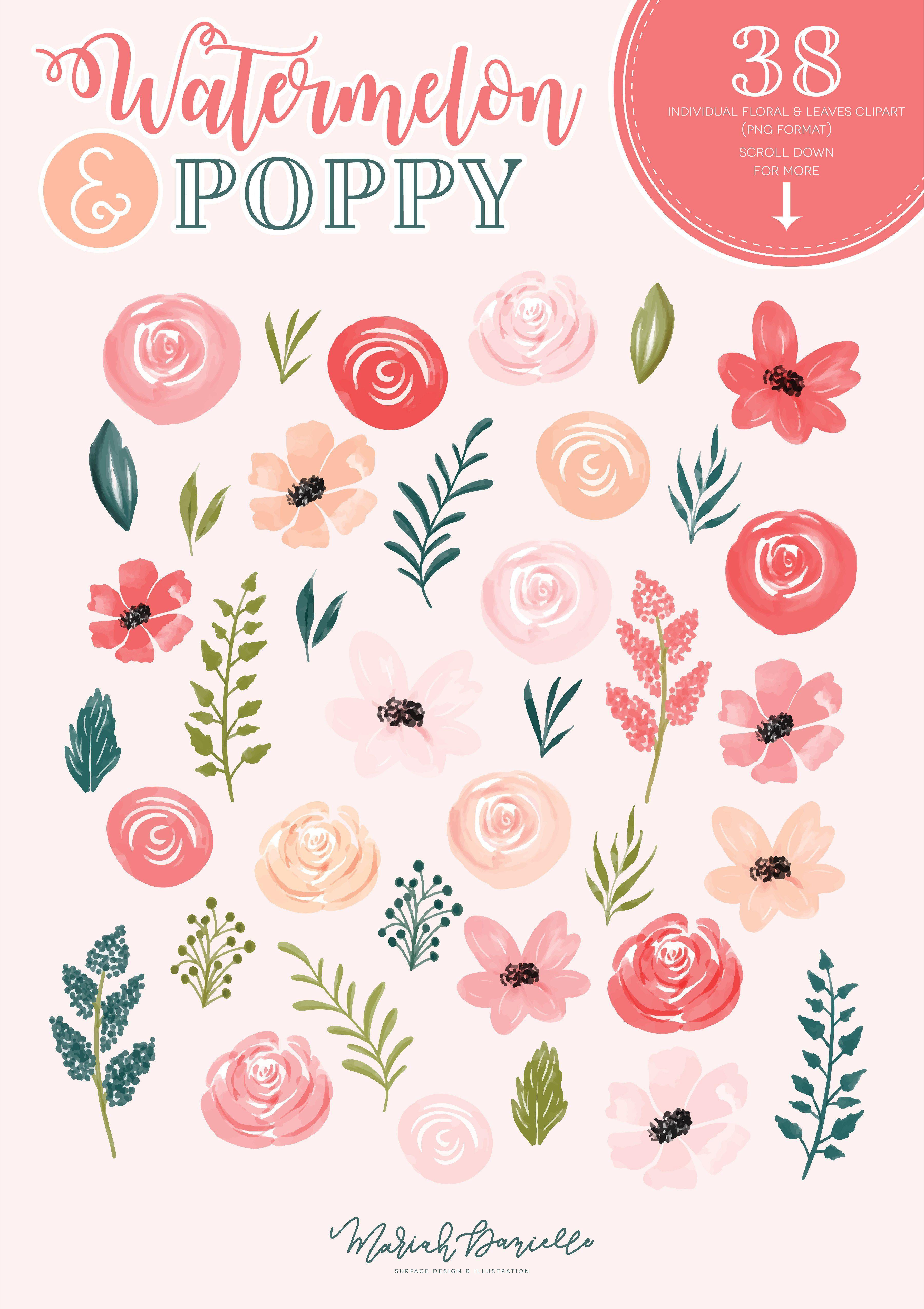 Watermelon Poppy Floral Clipart Set Art Prints Prints And Logos