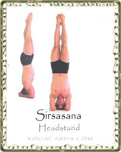 sirsasana the headstand info and yoga tutorial  yoga