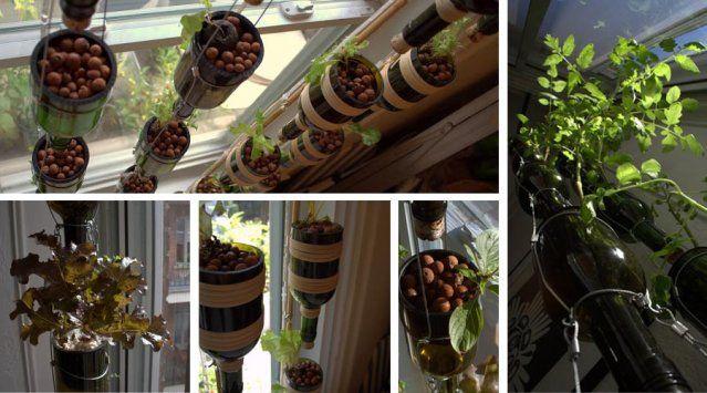 Un jardin potager l 39 int rieur de ma maison jardins for Jardin interieur maison