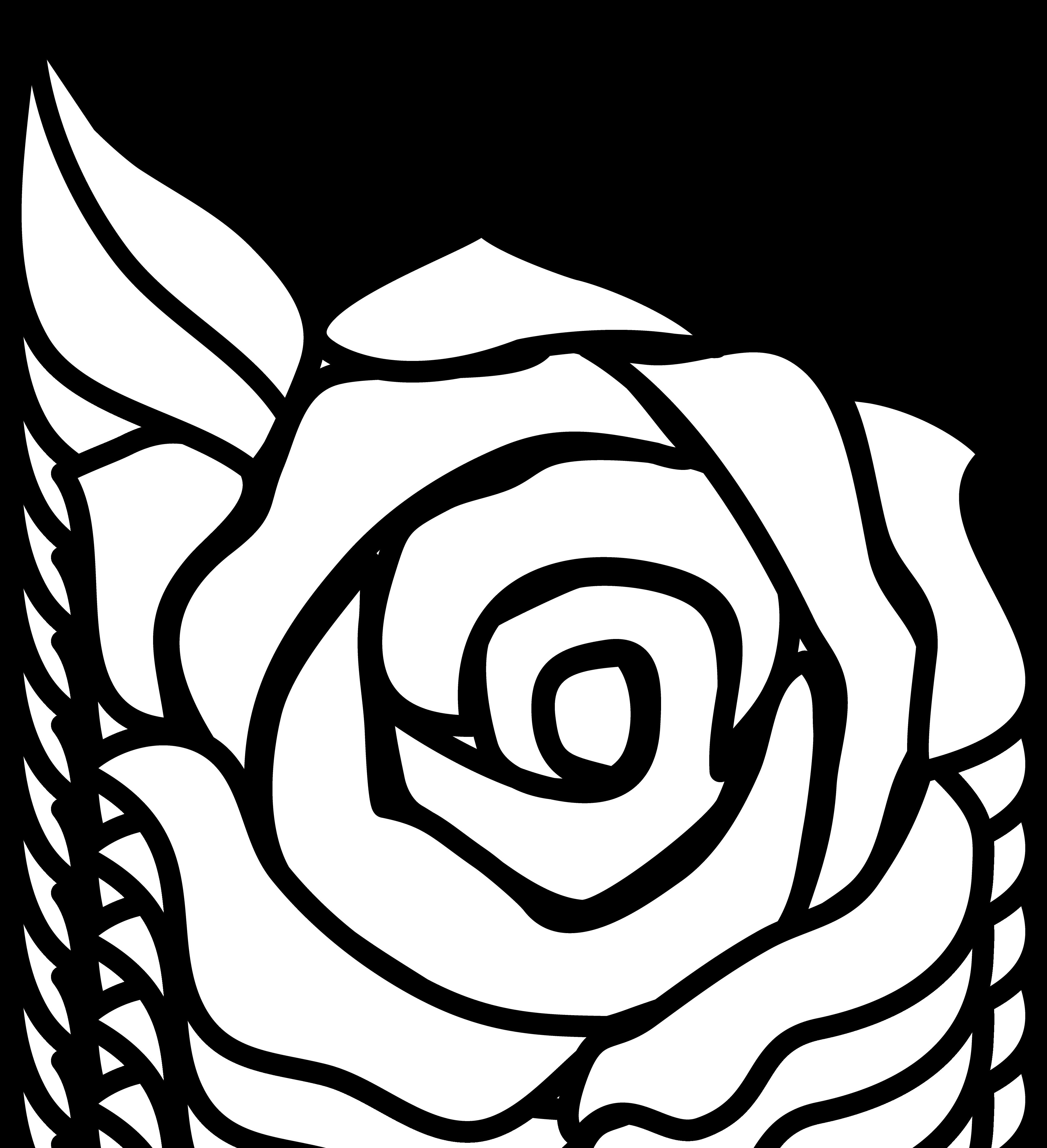 Black And White Rose Border Clip Art Clipart Panda Free
