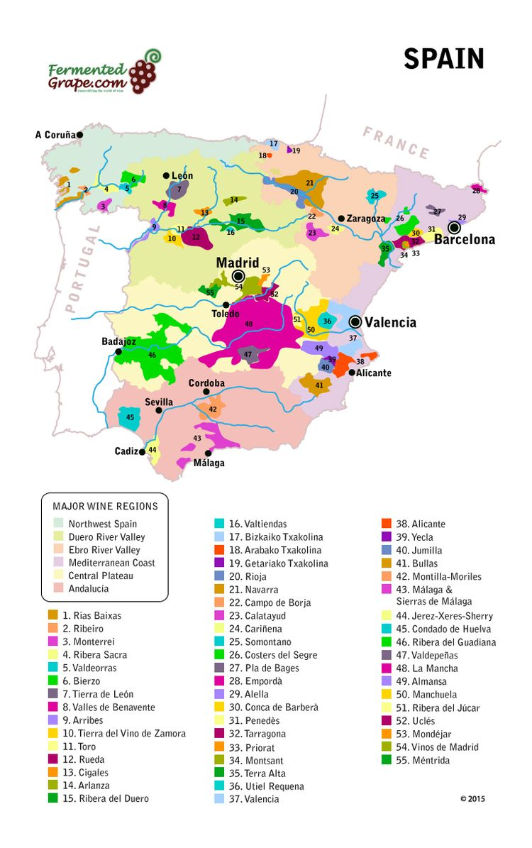 A guide to Rioja and Ribera del Duero (Spain) wines