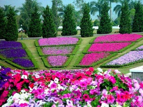 Delightful Photo Of Flower Garden Ideas