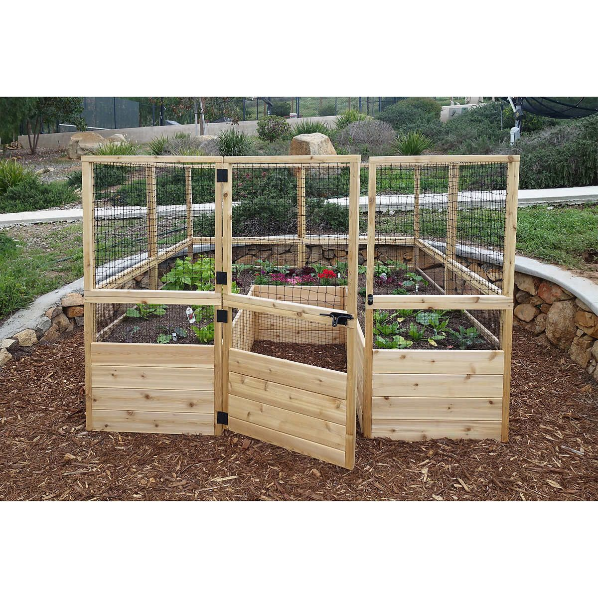 deer proof 8 x 8 raised garden bed