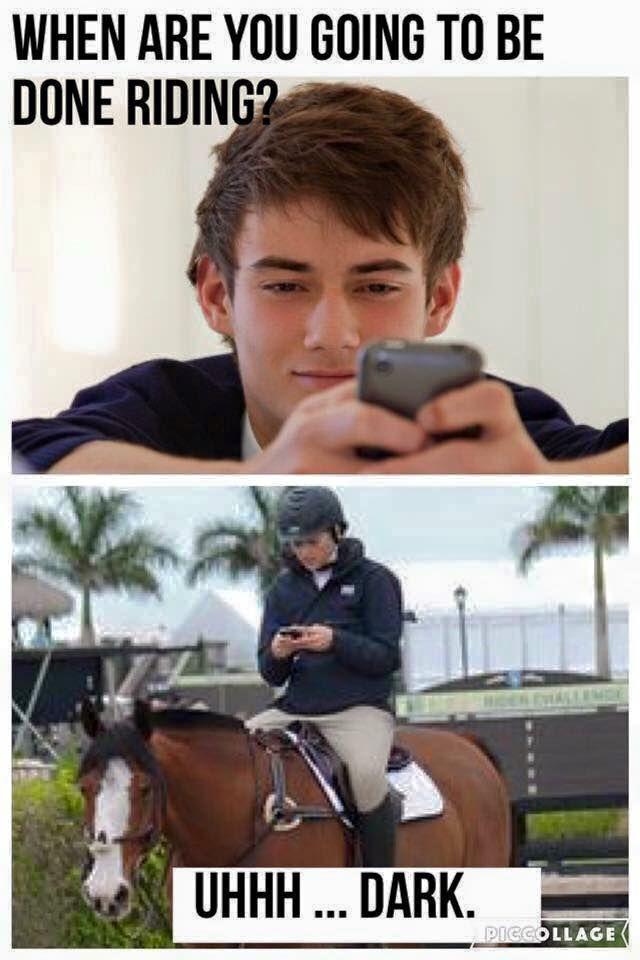 Dating an equestrian meme