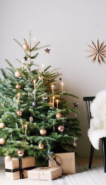Weihnachtsdeko Baum.Oh Tannenbaum Oh Tannenbaum Nicht Nur Die Christbaumkugeln Hängen