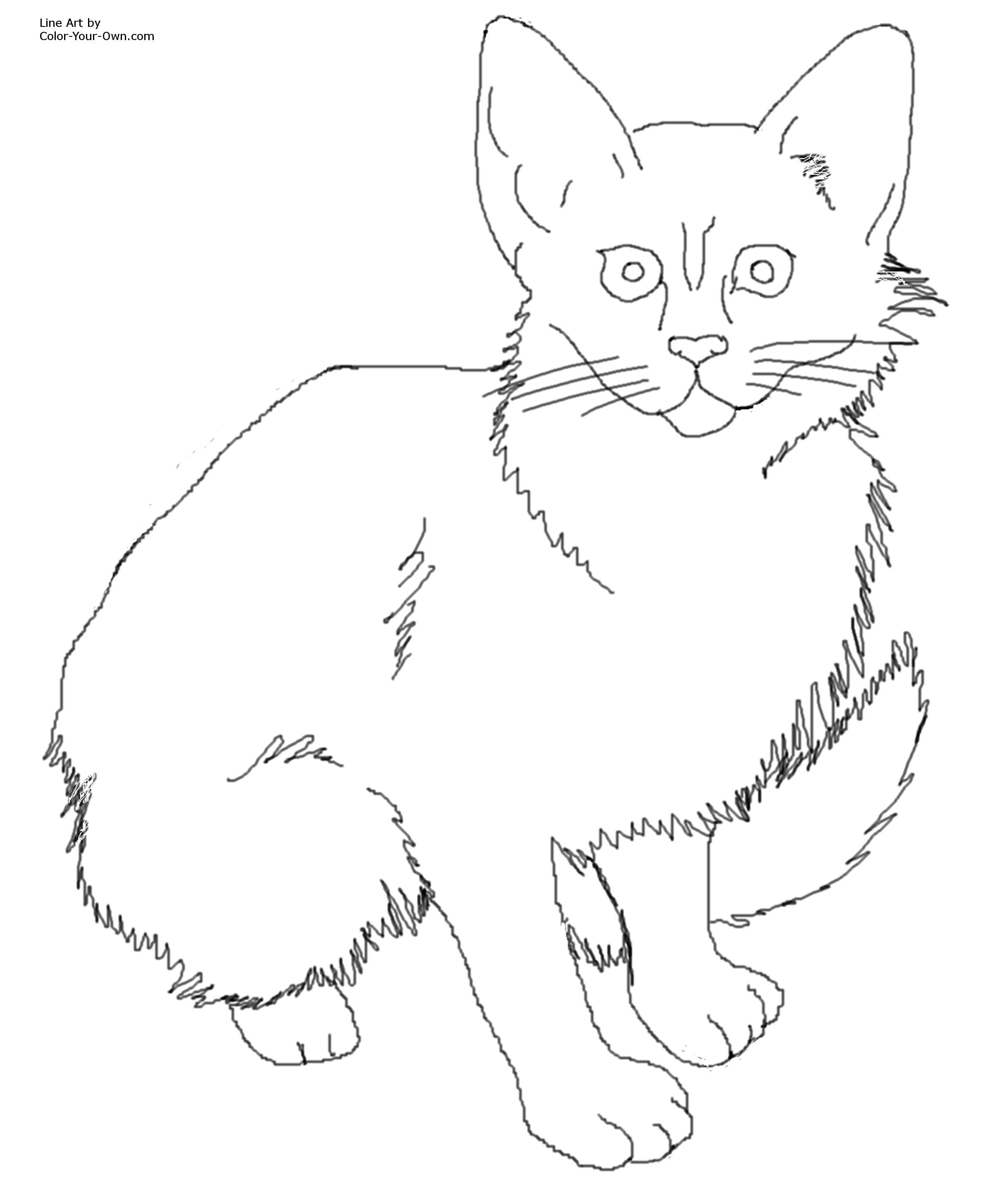 Cat Color Pages Printable Click Here For The 8 5 X 11 Printable