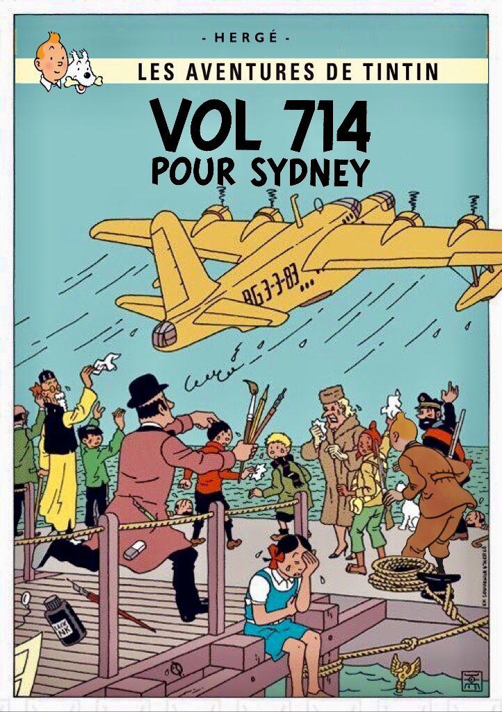 Vol 714 pour Sydney | Tintin, Tintin dessin animé, Hergé