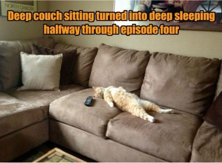 9fa2d401d62ed4a6577c019642d400ab funniest memes [deep couch sitting turned into] funniest memes
