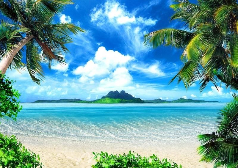 Magical Coast Beach Backdrop Beach Background Beach Wallpaper