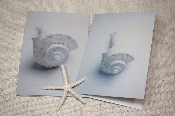Sundial Shell Note Cards Shell Portrait Catilla by catilla on Etsy, $12.00