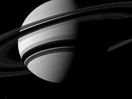 Pesca Saturno