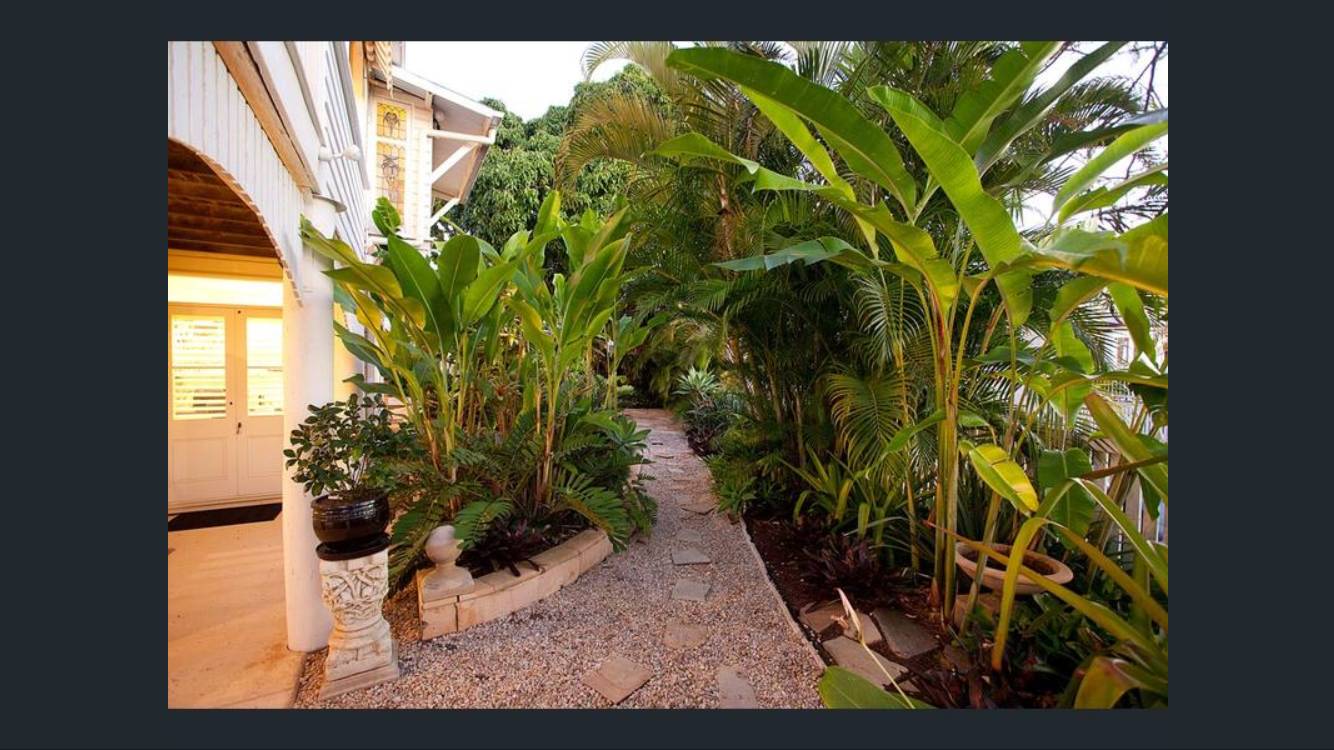 Pin by Michelle Loughton on The Queenslander   Plants ...