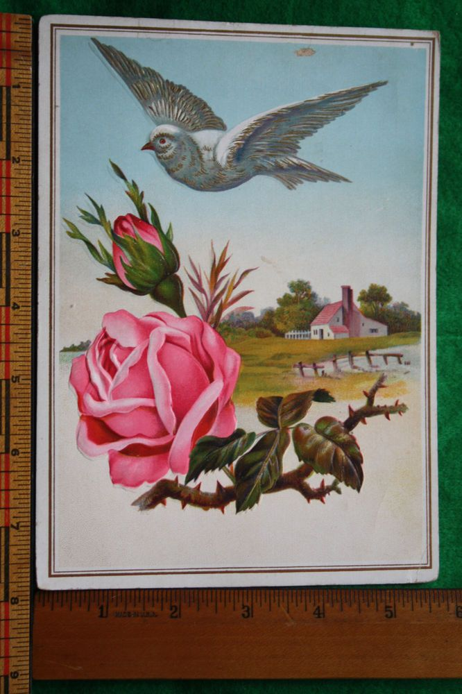 Antique Victorian Greeting Card Bird Pink Roses VTG Home Scene J K BERGEY