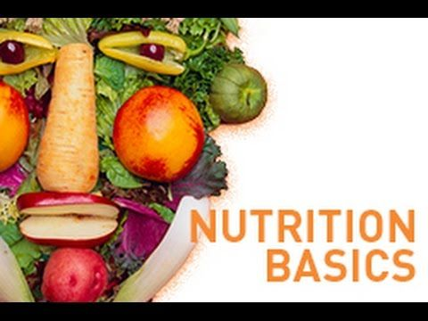 Nutrition Basics  MicroNutrients And MacroNutrients  Youtube