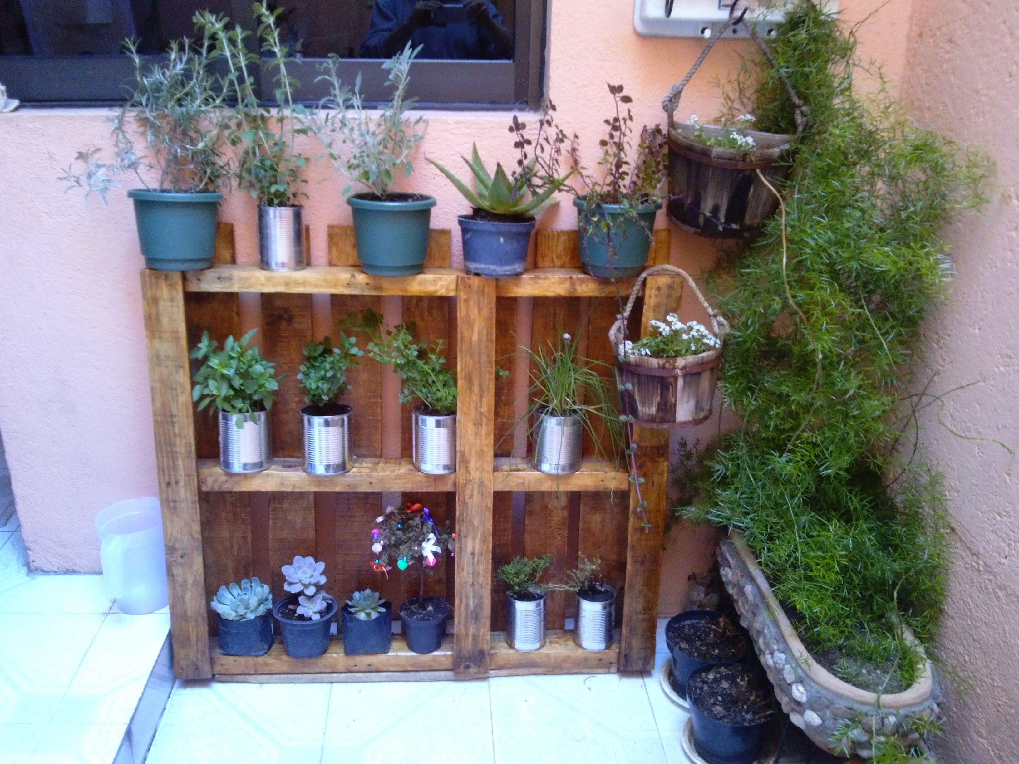 Dado que no tengo un jard n y me gusta tener las plantas for Ideas para decorar mi jardin
