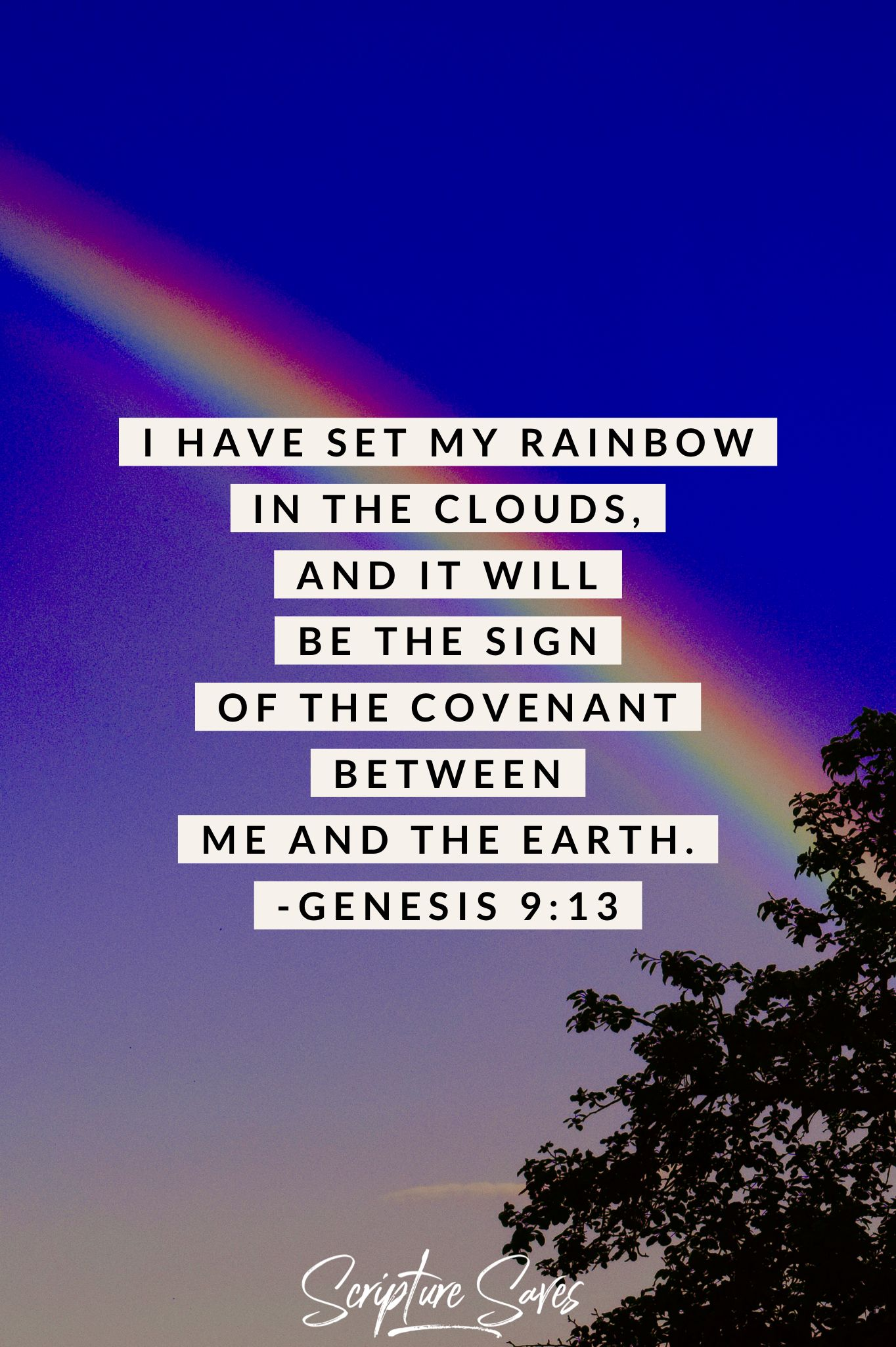 minute daily devotion the reason why god gave us rainbows is