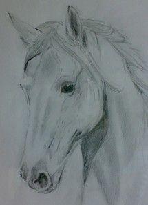 Goede paarden tekeningen - Google zoeken | Dieren tekenen, Paard OZ-89