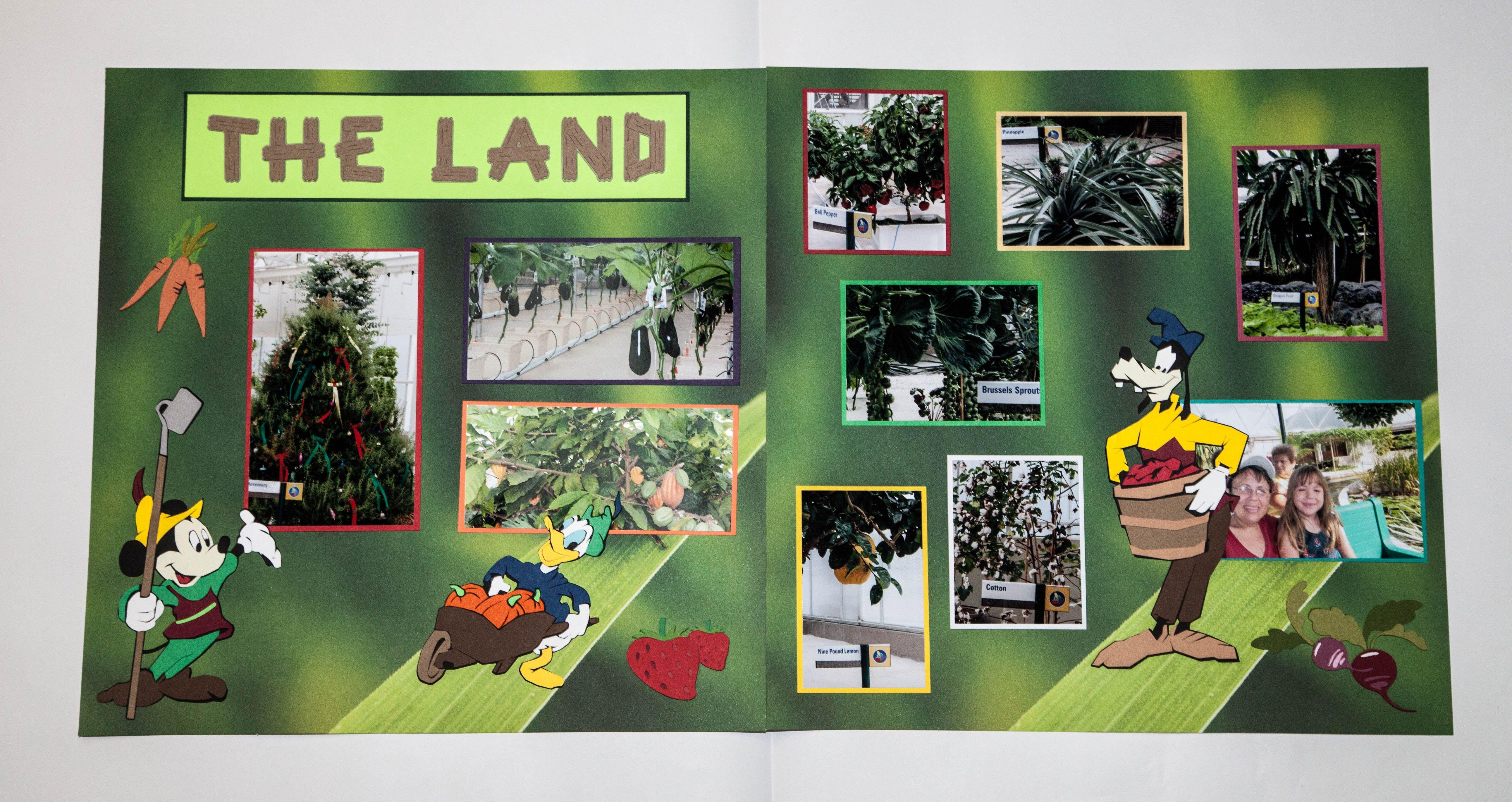 EpCot The Land